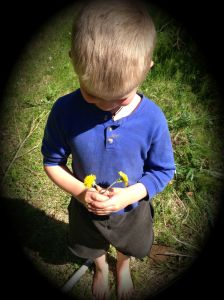 with dandelions2