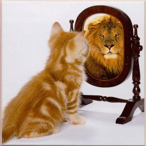 cat-lion_mirror
